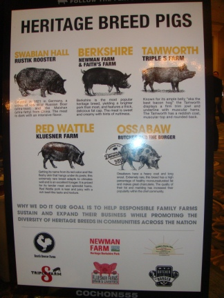 Cachon 555: Heritage Breed Pigs