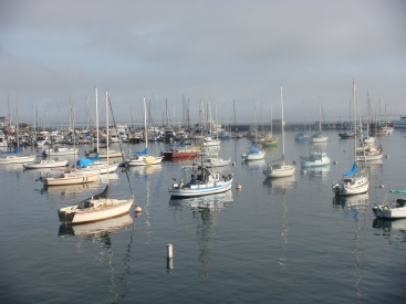 Monterey Bay in California