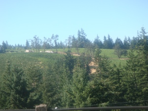Phelps Winery in Oregon