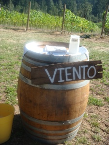 Viento Winery in Oregon