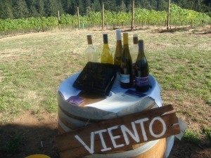 Viento Winery