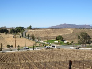 Temecula Wineries 2014 071
