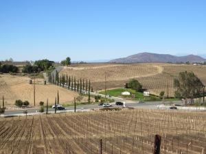 Temecula Wineries 2014 071